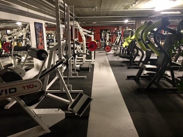 gym-2017e